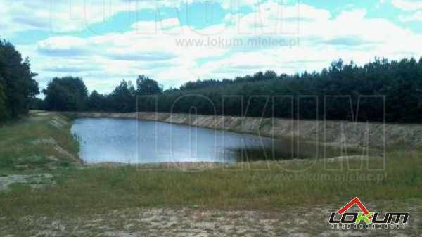 http://www.lokum.mielec.pl/oferta LOKUM Nieruchomości Mielec Staw rybno - rekreacyjny okolice Czermina