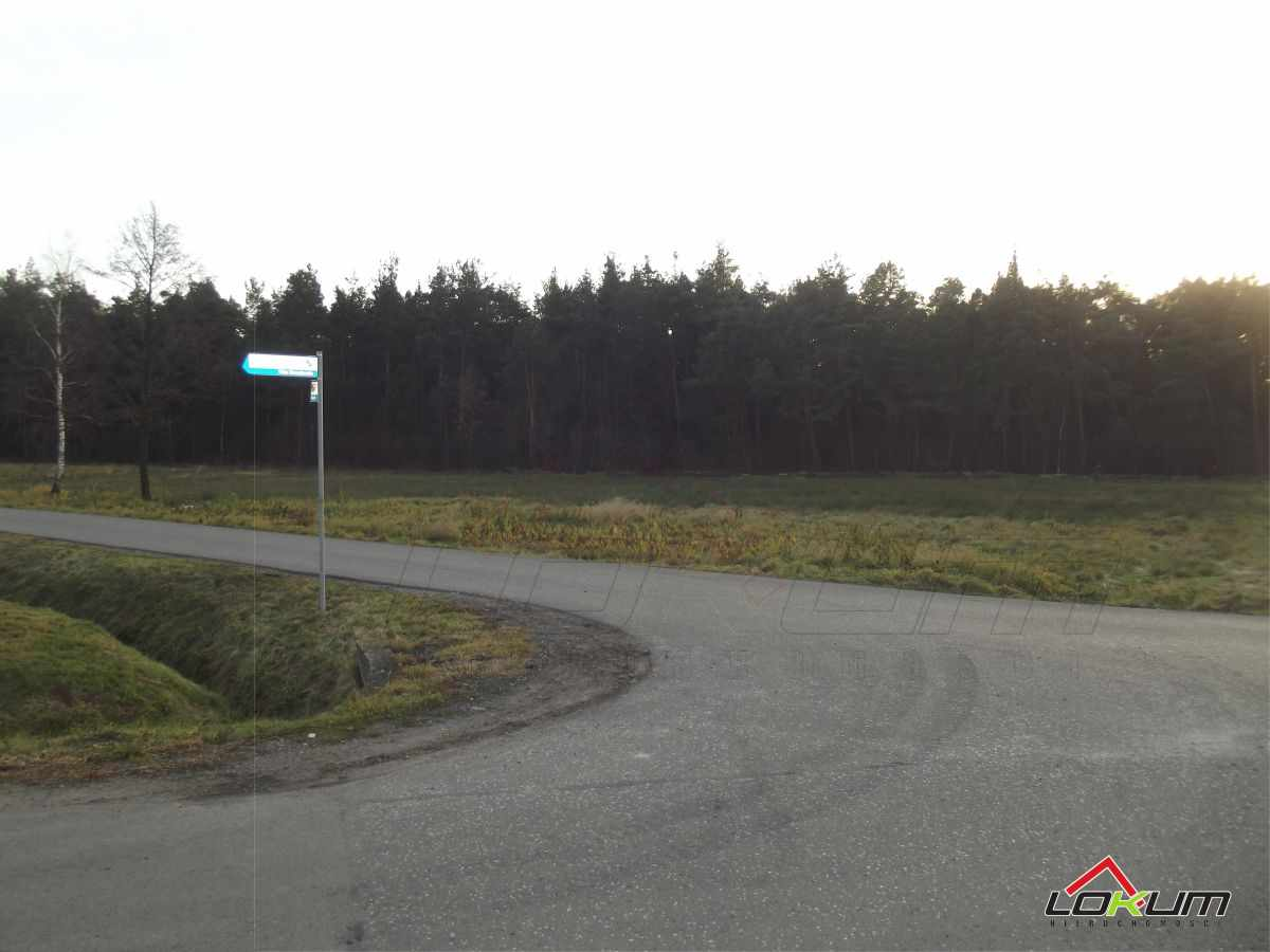 fotografia oferty  Piętrowa rezydencja na sprzedaż w ładnej okolicy Wola Chorzelowska ul